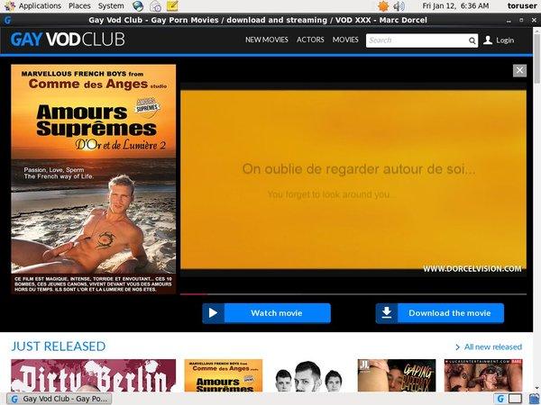 Gayvodclub.com Co