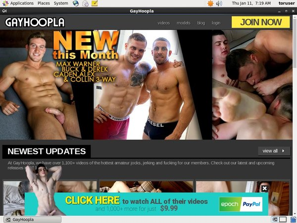 Gayhoopla.com Premium