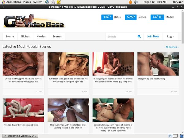 Gayvideobase.com Web Billing